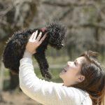犬にサプリメントを与える簡単な方法3つ!