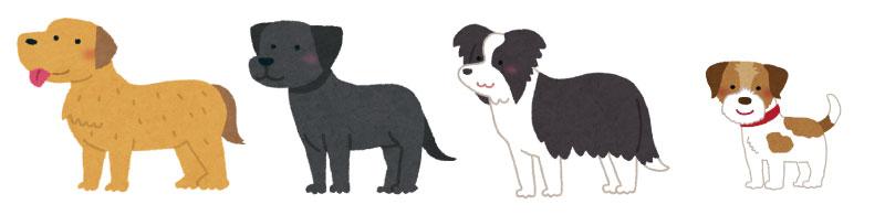 フリスビードッグに向いている犬のイラスト