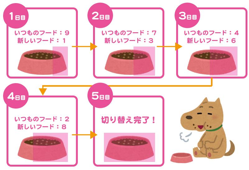 ドッグフードの切り替え方法5日間編目安