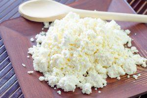 発酵食品で愛犬の健康サポート!カッテージチーズがおすすめ!