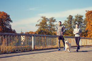 愛犬とのジョギングを楽しもう!これだけは抑えておきたい注意点と必要なもの
