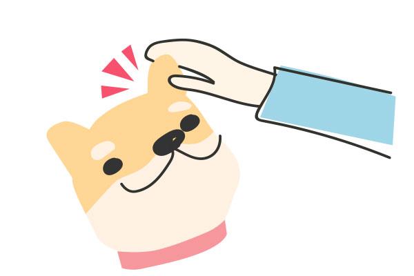 犬の嫌がる事をする