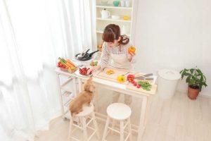 【獣医師監修】愛犬のダイエットにぴったりなお野菜はコレ!