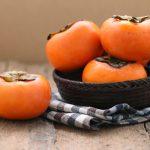【獣医師監修】柿を使った犬用の簡単おやつレシピと柿を食べさせる際の注意点