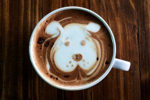 愛犬とドッグカフェに行きたい!関東各地でおすすめの店舗リスト