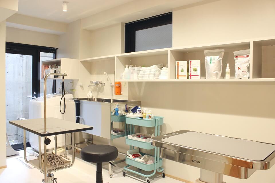 皮膚と耳専門 ヒフカフェ動物病院