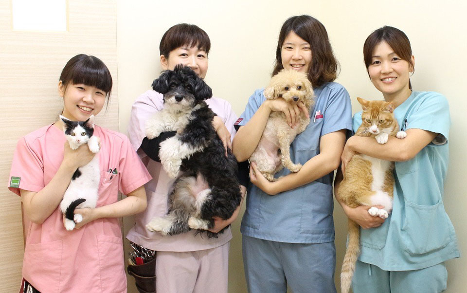 なないろ動物病院