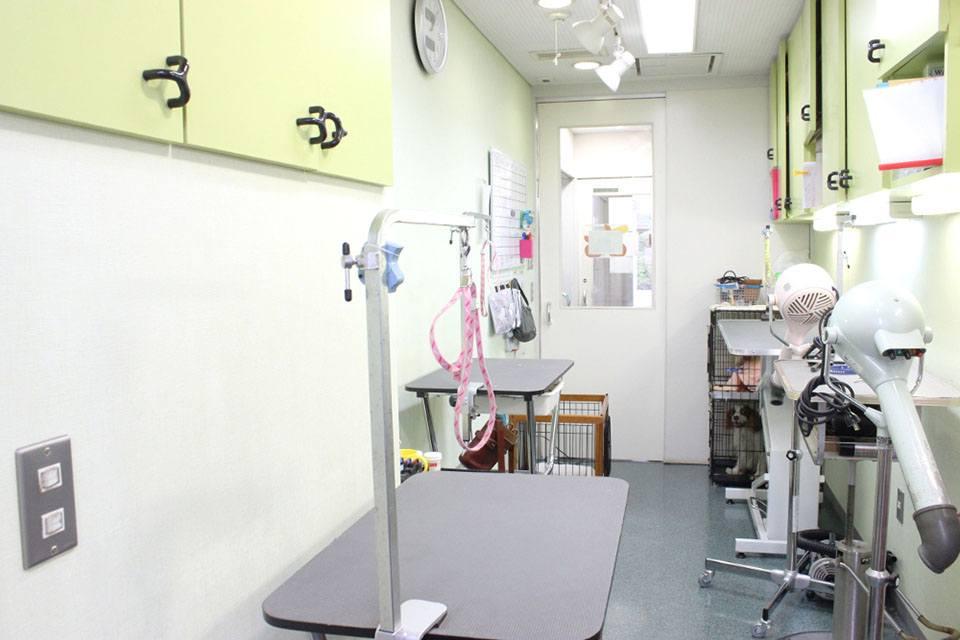 さがみ総合どうぶつ医療センター(トリミング)