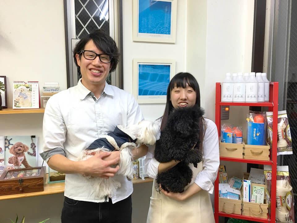 犬の美容室アスティ 蘇我店