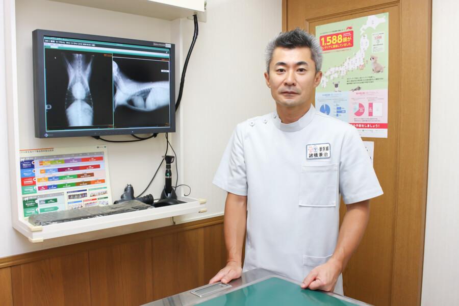 千葉市の動物病院8選!口コミ掲載!