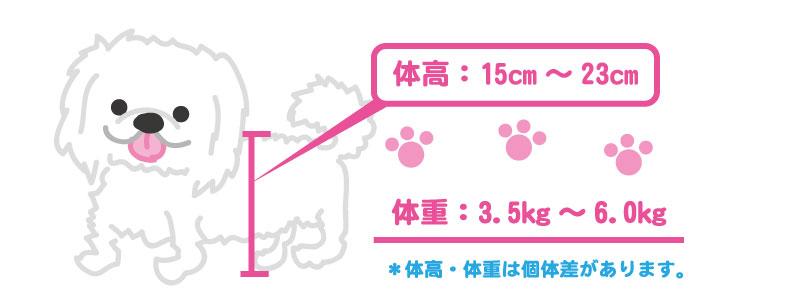 ペキニーズの体高と体重