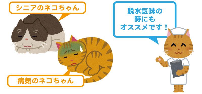 水分補給ゼリーがオススメの猫