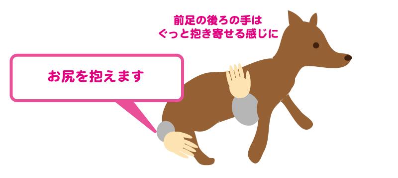 抱っこの仕方2