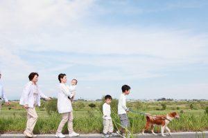 今すぐ始められる愛犬の適応力を高める訓練方法をご紹介
