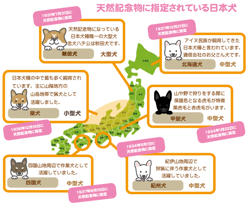 天然記念物6犬種マップ