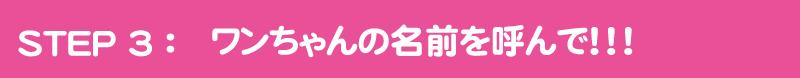 ステップ3:ワンちゃんの名前を呼んで!!!