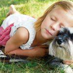 愛犬が咳をしたり、呼吸が早くなったら要注意。もしかしたら肺水腫かも。