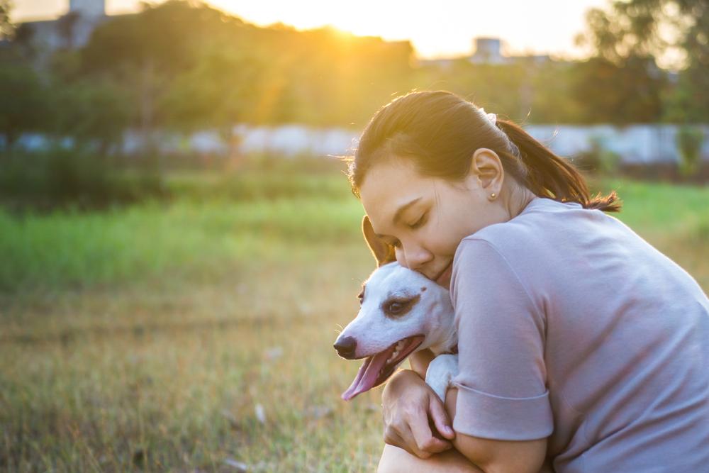 愛犬とのハグがストレス解消や病気予防になるかも?!