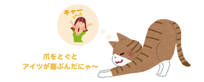 猫勘違いイメージ