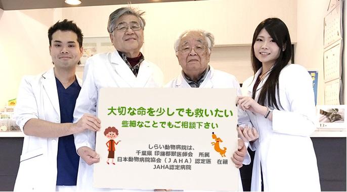佐倉しらい動物病院
