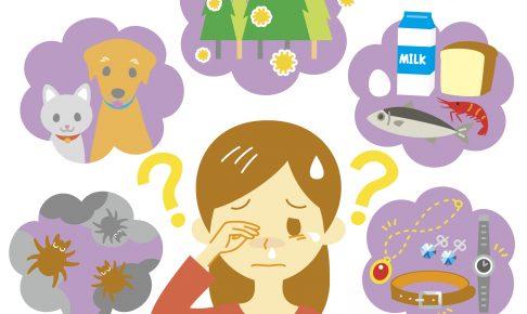 猫が好きな私がなぜ猫アレルギーに?原因、症状と治療法を知る