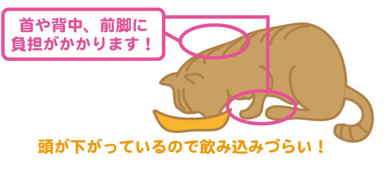食事台がない場合の猫の姿勢