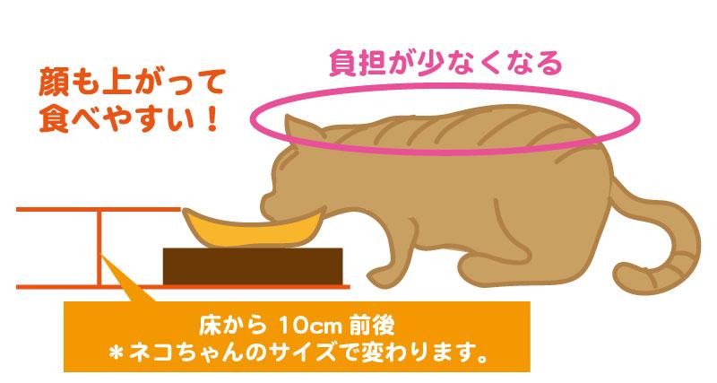 食事台がある場合の猫の姿勢