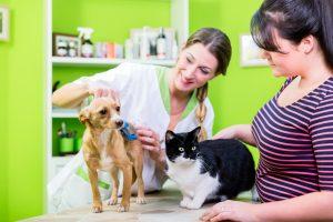猫に最低限必要な3つのトリミング~自宅で飼い主が行うケアについて