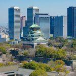 大阪市で評判の動物病院11選!夜間対応可能施設など