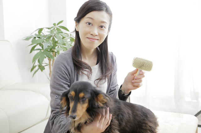 みんなどうしてる?ペットの抜け毛対策と予防について