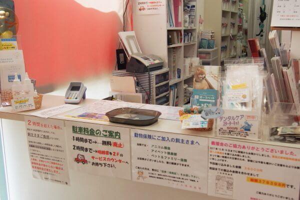 神戸市でおすすめの動物病院6選!WEB受付ができる病院あり