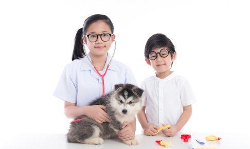 【獣医師監修】自分でできる愛犬の健康チェック~飼い主さんは病気を早期発見できる
