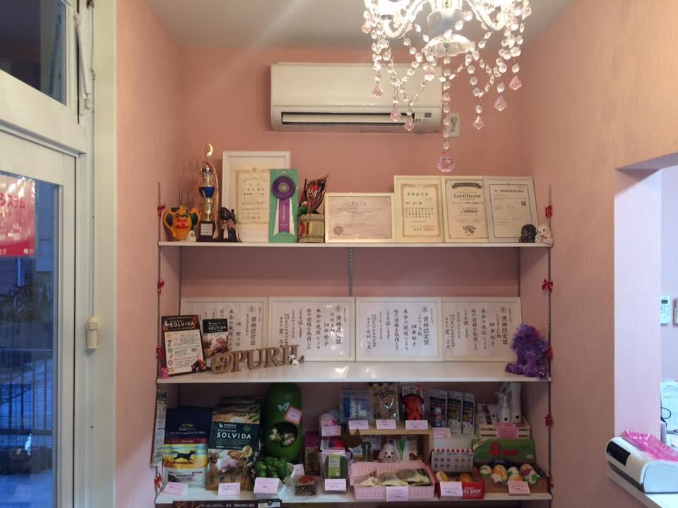 Pet salon PURIL