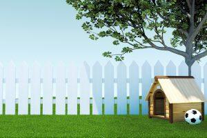 屋外で飼える犬種は?犬を屋外で飼う際の犬小屋設置方法と注意点
