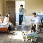 犬の飼い方入門編・飼う前に知っておきたい事前情報~心構え・準備・費用