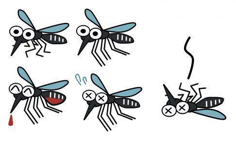 【獣医師監修】愛犬を蚊から守ろう!自宅でできるフィラリア予防の方法を解説!