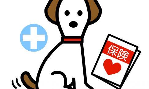 評判の良いペット保険はどこ?少額短期保険とは?最新ペット保険事情
