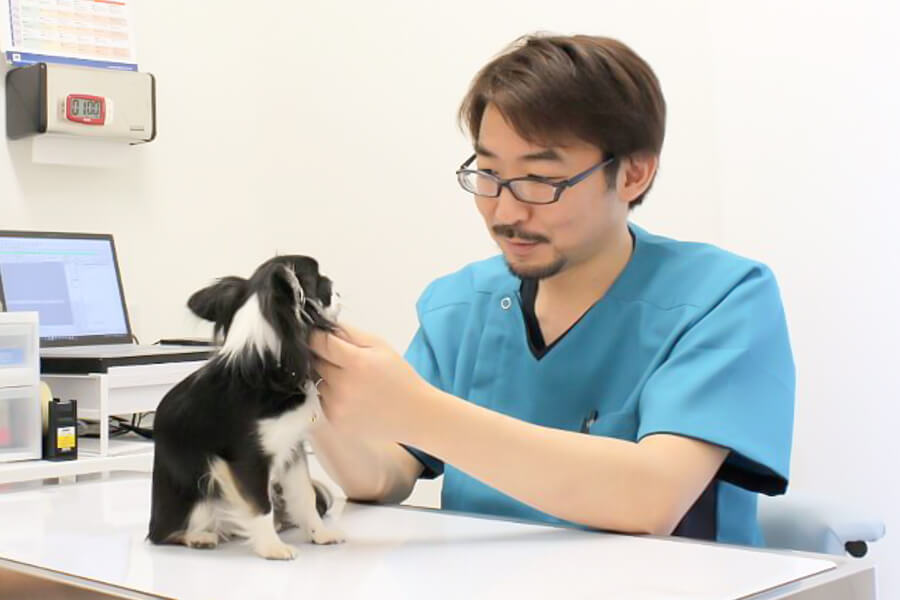 いちも動物病院 -Pet Life Ichimo 与野-の院長
