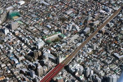 荻窪駅周辺でおすすめのトリミングサロン5選!犬猫のトリミングOK