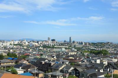 茨木市で動物病院を探すなら!おすすめ【3選】