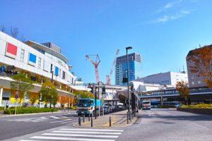 川崎駅周辺でおすすめのトリミングサロン3選!口コミ掲載