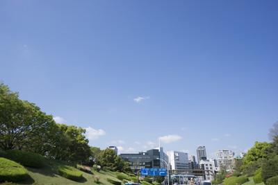 代々木上原駅周辺でトリミング!おすすめのペットサロン2選!
