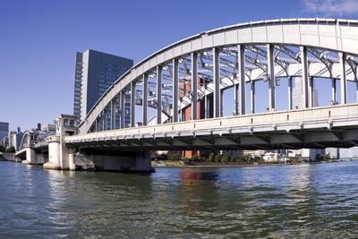 池尻大橋駅でトリミング!おすすめのペットサロン2選!