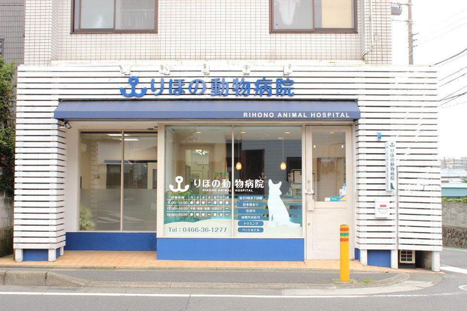 りほの動物病院