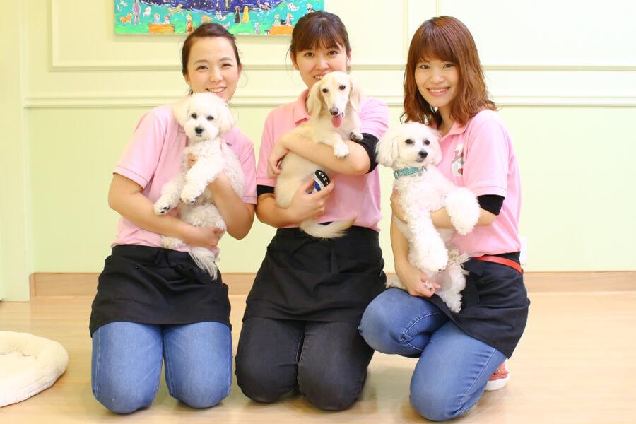 Dog Care Salon LINDO