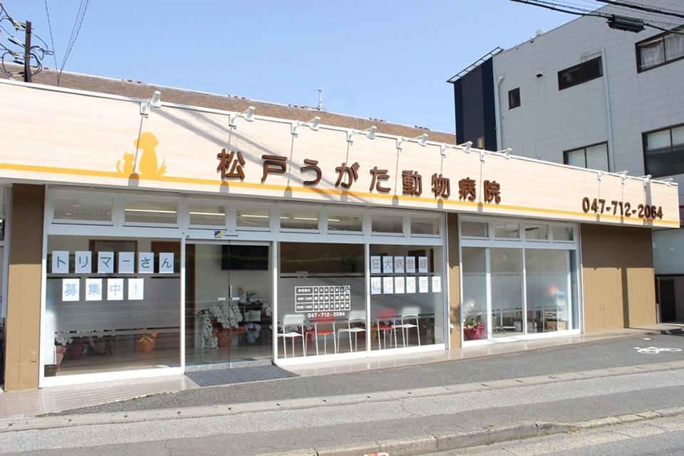 松戸うがた動物病院(トリミング)