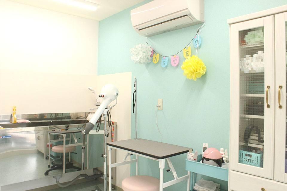 マリア動物病院(トリミング)