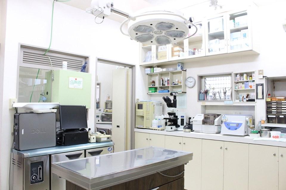 茨木動物病院