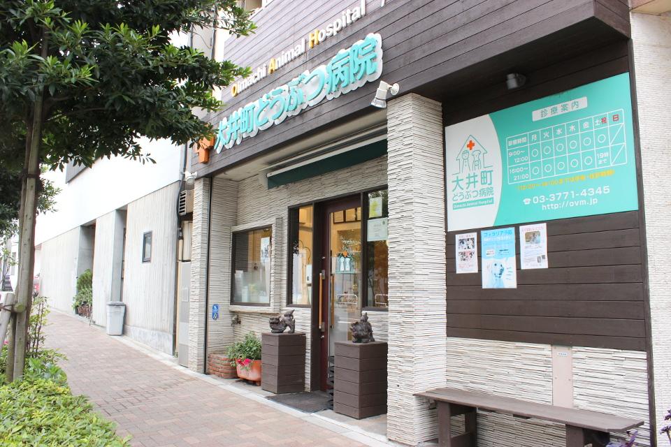 大井町どうぶつ病院
