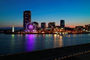 神戸市西区でトリミング!人気のペットサロン3選!